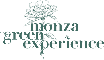 Monza Green Experience